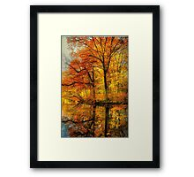 Fall colors of New England Framed Print
