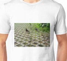 Pigeons on the pavement and grass in the park. Unisex T-Shirt