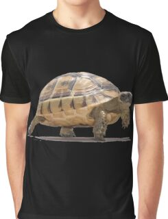 Marching Baby Tortoise Cartoon Vector Isolated Graphic T-Shirt