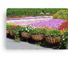 Many flowers in the park. Beautiful flower pots along the alley. Canvas Print