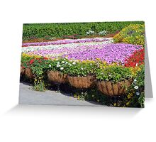 Many flowers in the park. Beautiful flower pots along the alley. Greeting Card