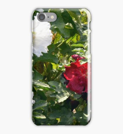 Red and white flowers in the park. Natural background. iPhone Case/Skin