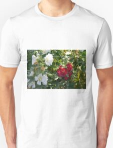 Red and white flowers in the park. Natural background. T-Shirt
