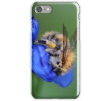 Bee on Tradescantia Spiderwort iPhone Case/Skin
