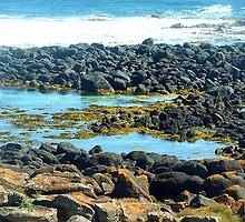 *Killarney Beach along West Coast - Vic. Aust.* by EdsMum