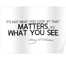 what you see - thoreau Poster