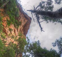 Things Are Looking Up by Michael Matthews