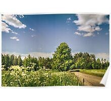 Bright summer day Poster