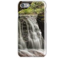 Natures Frame iPhone Case/Skin