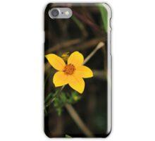 Small Yellow Wildflower iPhone Case/Skin