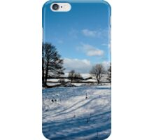 Sparrow pit the peaks. iPhone Case/Skin