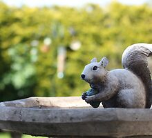 Garden Squirrel by Vicki Spindler (VHS Photography)