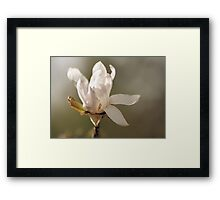 And she knew.... Framed Print