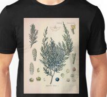 Köhler's Medizinal Pflanzen in naturgetreuen Abbildungen mit kurz erläuterndem Texte  Atlas zur Pharmacopoea 1883 1914 V2 013 Juniperus Sabin Juniper Unisex T-Shirt