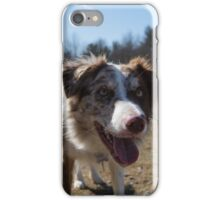 Commissioned Dog Demo 1 iPhone Case/Skin