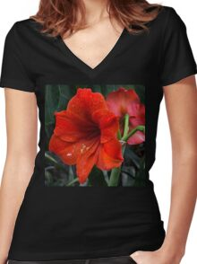 Ruby Red Amaryllis  Women's Fitted V-Neck T-Shirt
