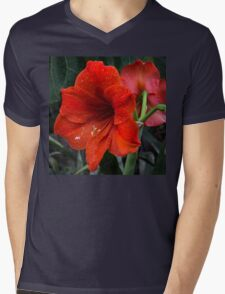 Ruby Red Amaryllis  Mens V-Neck T-Shirt