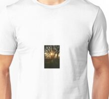 Tree in the sunlight Unisex T-Shirt