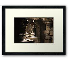 Stoned Beauty Framed Print