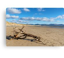Llanddwyn Island National Nature Reserve Canvas Print