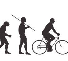 Tall Bike Evolution Sticker