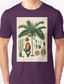 Köhler's Medizinal Pflanzen in naturgetreuen Abbildungen mit kurz erläuterndem Texte  Atlas zur Pharmacopoea 1883 1914 V2 112 Areca catechu T-Shirt