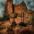 The Place of Snakes by RC deWinter