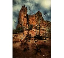 The Place of Snakes Photographic Print