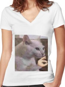 Fleek cat Women's Fitted V-Neck T-Shirt