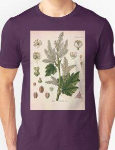 Köhler's Medizinal Pflanzen in naturgetreuen Abbildungen mit kurz erläuterndem Texte  Atlas zur Pharmacopoea 1883 1914 V2 082 Rheum Officinale T-Shirt