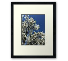Untouched-God's Work Framed Print