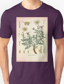 Köhler's Medizinal Pflanzen in naturgetreuen Abbildungen mit kurz erläuterndem Texte  Atlas zur Pharmacopoea 1883 1914 V2 030 Anacyclus Pyrethrum T-Shirt
