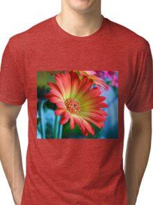 red on blue Tri-blend T-Shirt
