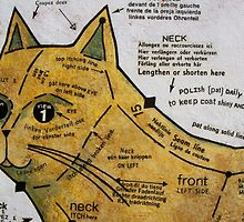 The Nine Carat Cat by Bonnie coad