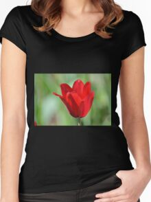 Backlit Red Tulip Women's Fitted Scoop T-Shirt