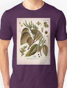 Köhler's Medizinal Pflanzen in naturgetreuen Abbildungen mit kurz erläuterndem Texte  Atlas zur Pharmacopoea 1883 1914 V1 051 Mallotus Philippinensis T-Shirt
