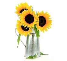 Sunflowers Bouquet. Photographic Print