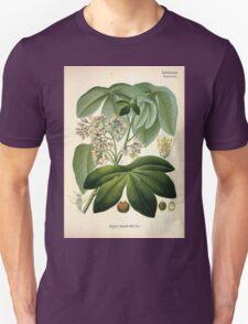 Köhler's Medizinal Pflanzen in naturgetreuen Abbildungen mit kurz erläuterndem Texte  Atlas zur Pharmacopoea 1883 1914 V3 006 Maniot Glaziovii T-Shirt
