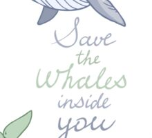 Save the whales inside you  Sticker