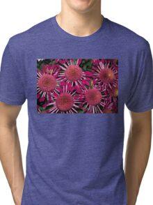 Like Suns, Like Stars or Just Exotic Mums Tri-blend T-Shirt