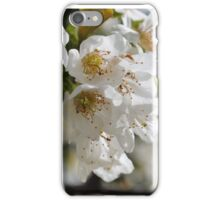 White Cherry Blossoms iPhone Case/Skin