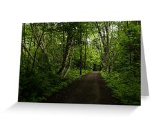 Summer Forest Tranquility - Beautiful Charlevoix, Quebec, Canada Greeting Card
