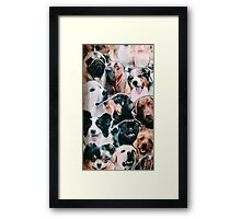doggy collage  Framed Print