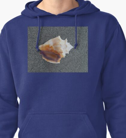 Beautiful sea shell on damp sand Pullover Hoodie