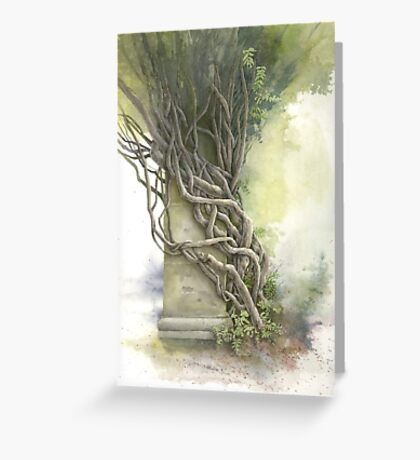 Biltmore Wisteria Greeting Card