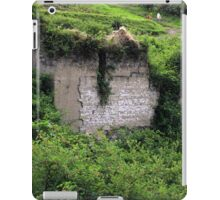 Overgrown Adobe Building iPad Case/Skin