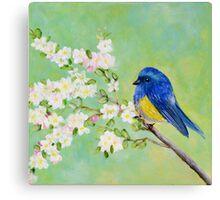 Bird on Branch - Whimsical Art Canvas Print