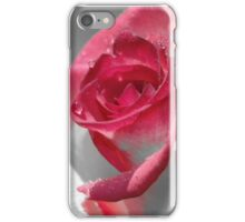 …is a Rose iPhone / Samsung Galaxy Case iPhone Case/Skin
