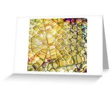 Cosmic Laughter Greeting Card