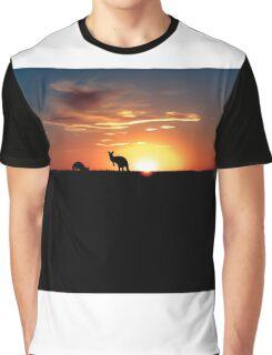 Kangaroos at Sunset Graphic T-Shirt